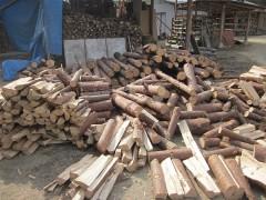 来年用に山から運んでき薪