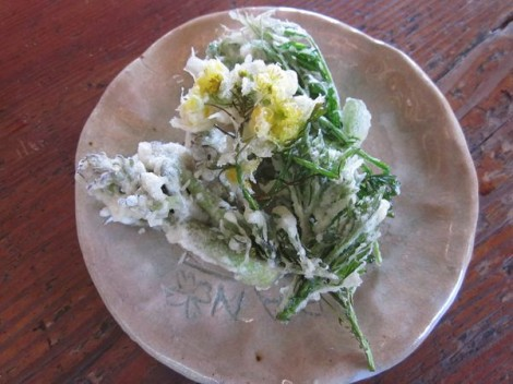 山菜、野草の天麩羅