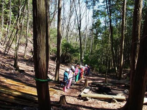 間伐 里山整備 森林 環境教育