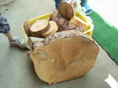 森林 環境教育 里山 保育