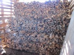 穴窯 薪割り 赤松