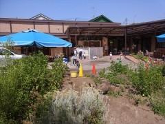 草來舎 保育園 焼物教室 陶芸教室