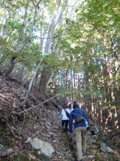 自然体験 環境教育 保育 草來舎