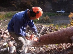 登り窯 薪 林業 環境教育 里山 保全 間伐
