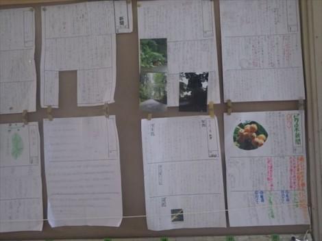 環境教育 自然教育 森林教育 地域教育 ワークショップ 出前授業 草來舎