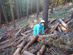 登り窯 赤松 薪 森林教育 環境教育 草來舎
